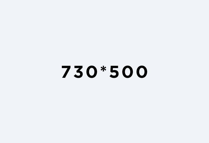 730*500